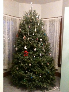 The best Christmas tree. We got a spectacular one this year.
